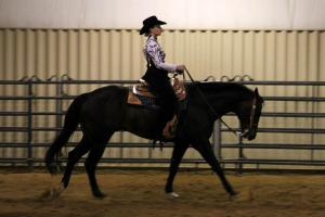 Equine Judging is an example of a CDE in FFA. Photo Courtesy of Cassie O'Hara, Missouri State University